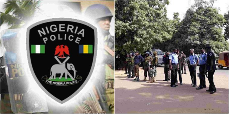 #Xenophobia: 125 Lagosians Arrested For Looting