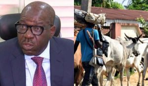 Sambisa forest is an ideal place to begin Ruga – Godwin Obaseki