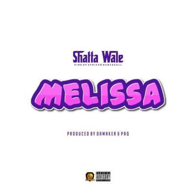 Shatta Wale Melissa Video
