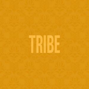 Jidenna Tribe Mp3 Download