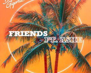 Big Gigantic Ft Ashe Friends Mp3 Download