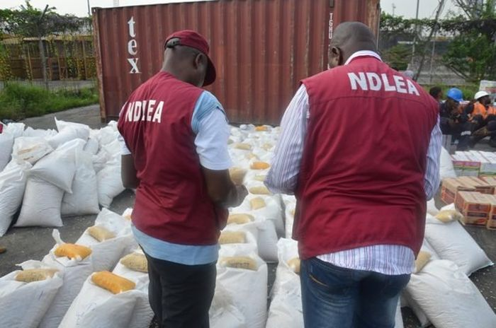 Nigerian Youths Now Take Urine To Get High – NDLEA