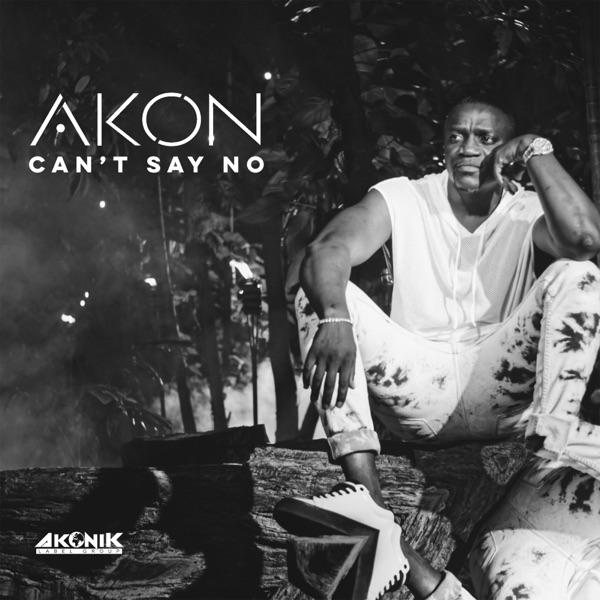Akon Can't Say No Mp3 Download