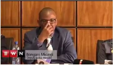 South Africa's Deputy Minister Of Police Supports Attacks On Nigerians (Video)