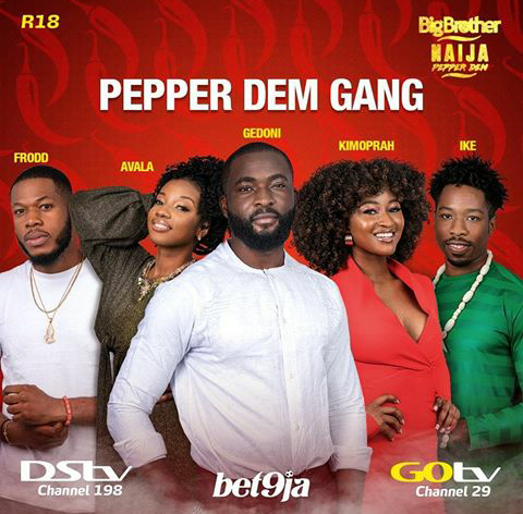 FG Sanctions Big Brother Naija, 45 Other Stations