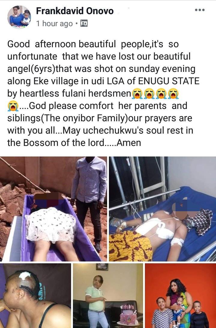 Fulani Herdsmen Shoots 6 Year Old Girl In Enugu State (Graphic Photo) 15