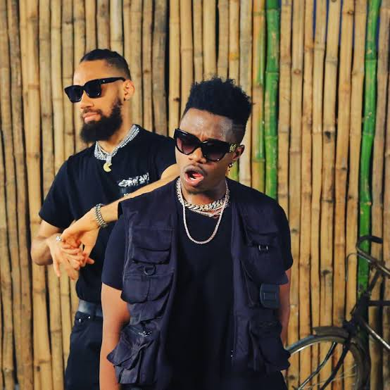 Rayvanny Ft Phyno – Slow