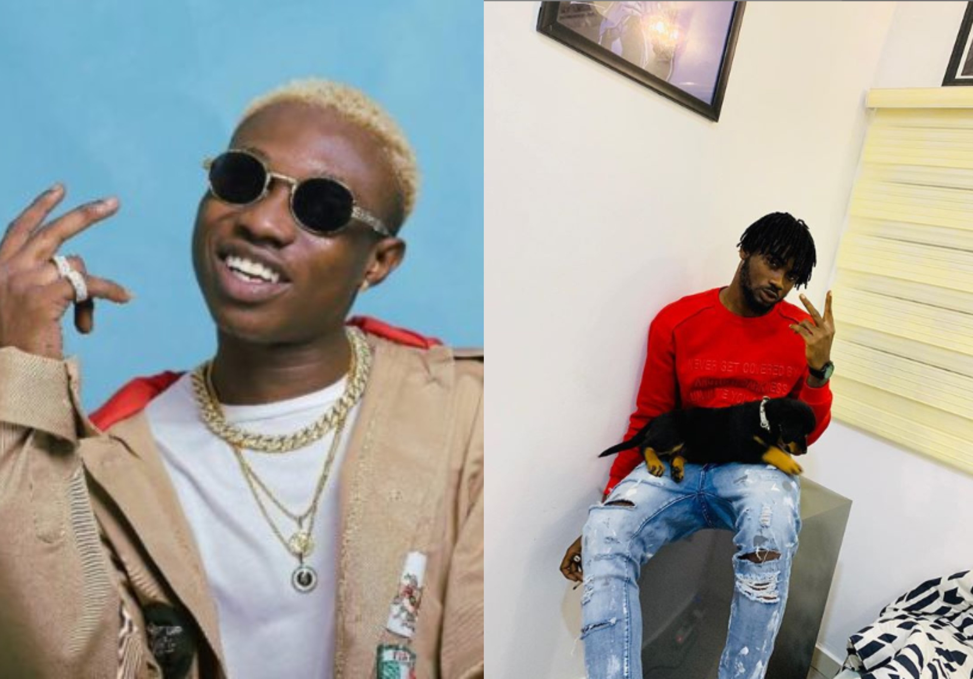 Zlatan Ibile Reacts As His DJ Names His Dog 'Tacha' 5