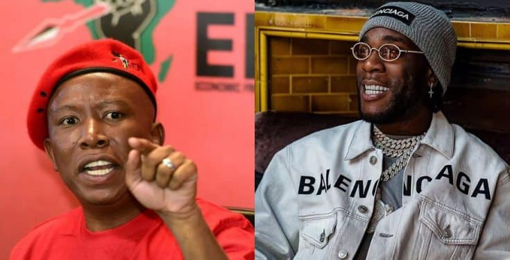 Political Leader, Julius Malema Assures Burna Boy Of His Safety In South Africa