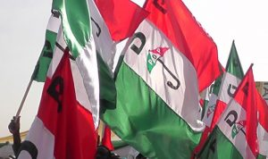 PDP Makes Final Decision On Changing Name