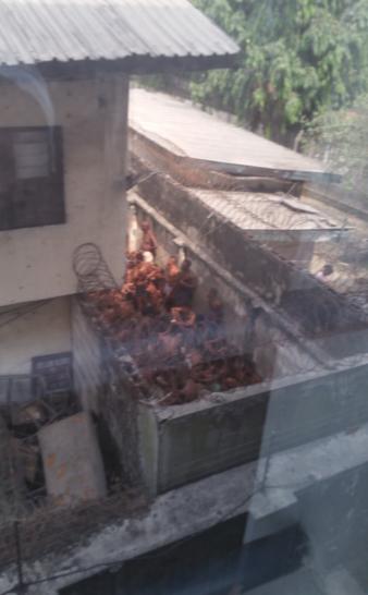 OMG! See Where EFCC Keeps Suspected 'Yahoo Boys' In Port Harcourt (Photos)