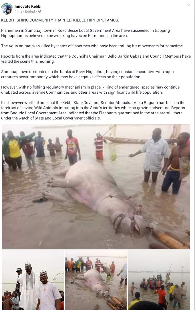 Fishermen Kill Hippotamus In Kebbi State (Photos)