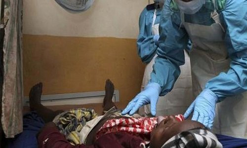 Lassa Fever Hits Lagos State