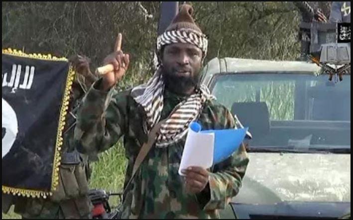 I Am Not Afraid Of Trump – Boko Haram Leader, Shekau