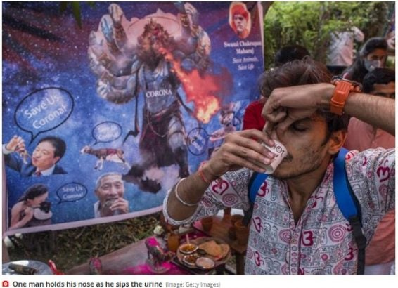 Indians Reportedly Drinking Cow Urine To Prevent Coronavirus
