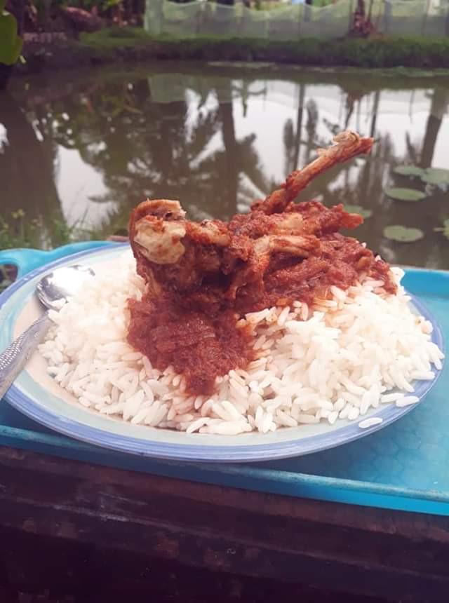 Nigerian Man Prepares Stew With Frog Meat (Photos) 14