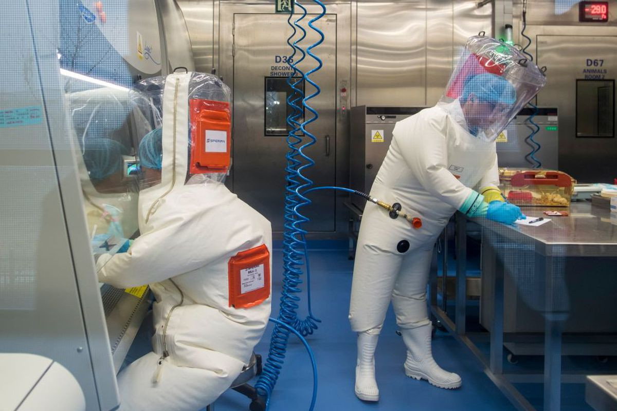 China Places Restriction On Research On Origin Of Coronavirus 3