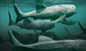 Giant Fish That Lived Around 380 Million Years Ago Found In Sahara Desert 3
