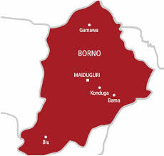 Borno Gov't Lifts Lockdown, Ask Churches And Mosques To Reopen