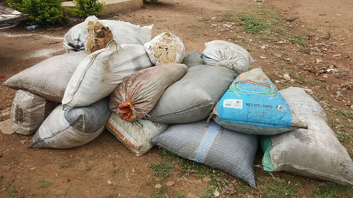 Over 14 Hectares Of Cannabis Sativa Farm Destroyed By NDLEA In Osun 6