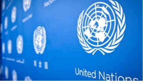UN Suspends Two Officials Caught Making Love In Official Car