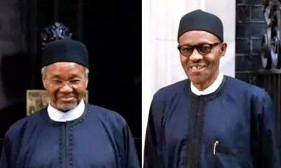 Mamman Daura didn't speak Buhari's mind
