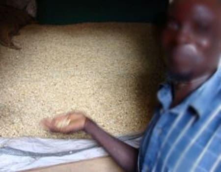 Seven Family Members Dies Of Food Poisoning In Zamfara
