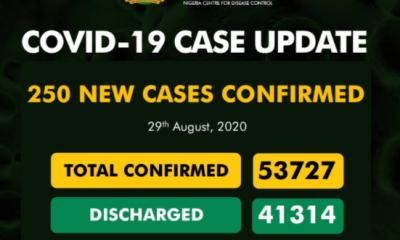 Nigeria Records 250 New Cases Of Coronavirus 13