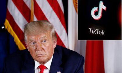 We're Not Going Anywhere - TikTok Replies President Trump