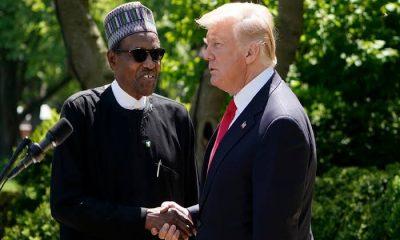 Donald Trump Accused Me Of Killing Christians - President Buhari
