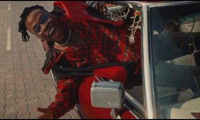 Fireboy DML Friday Feeling Video Mp4 Download