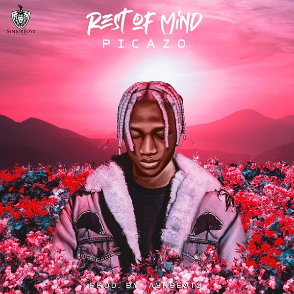Picazo Rest Of Mind Mp3 Download